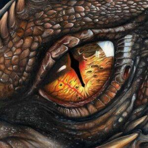 Красный дракон Dreamspell