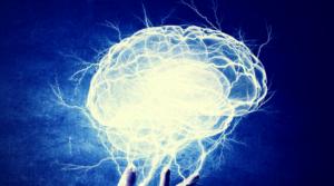 Мозг: преображение