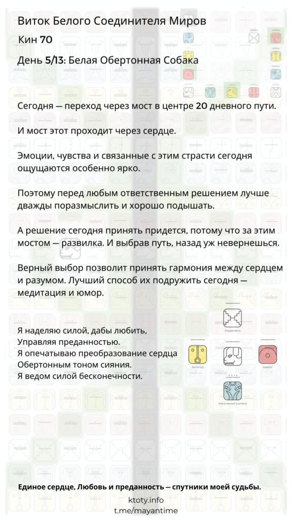 70. Белая Обертонная Собака